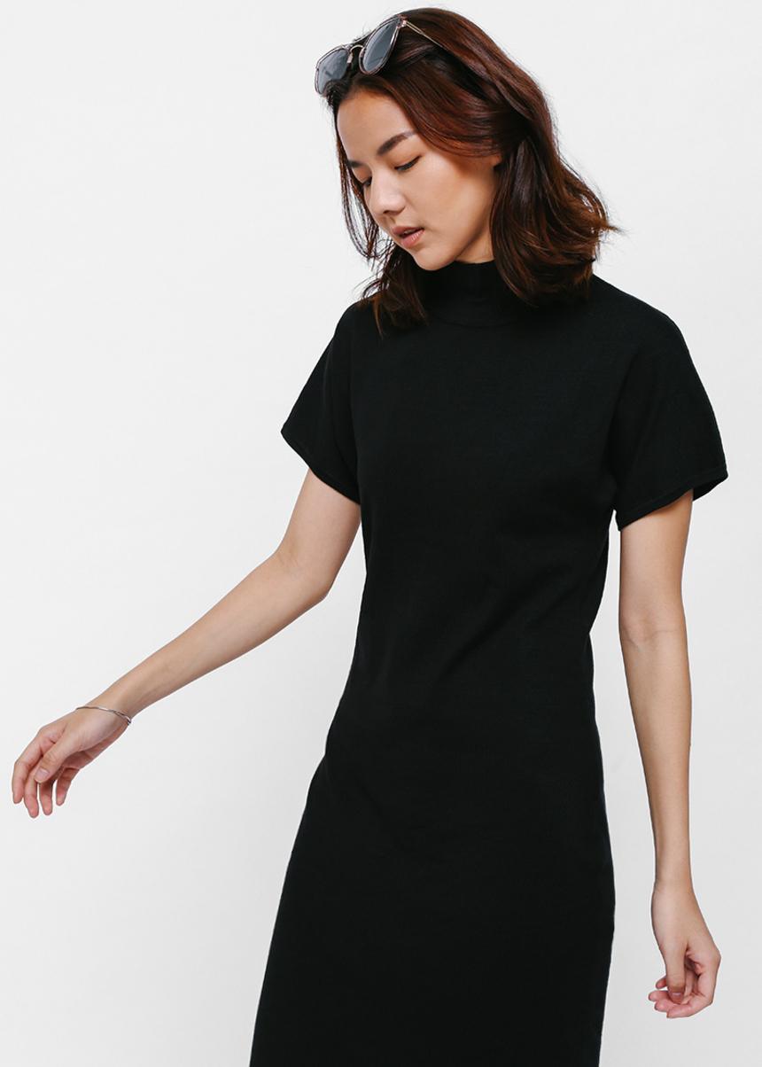 Liolyn Turtleneck Midi Dress
