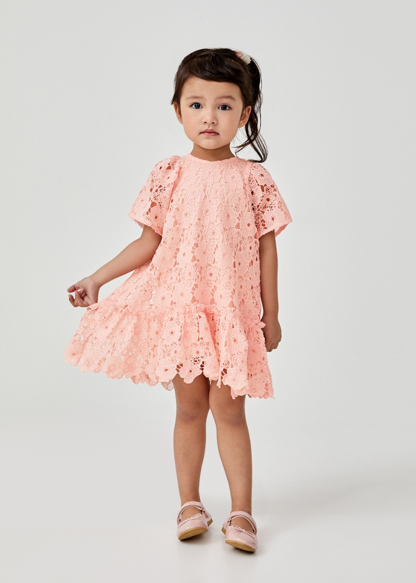 Hebie Lace Puff Sleeve Dress