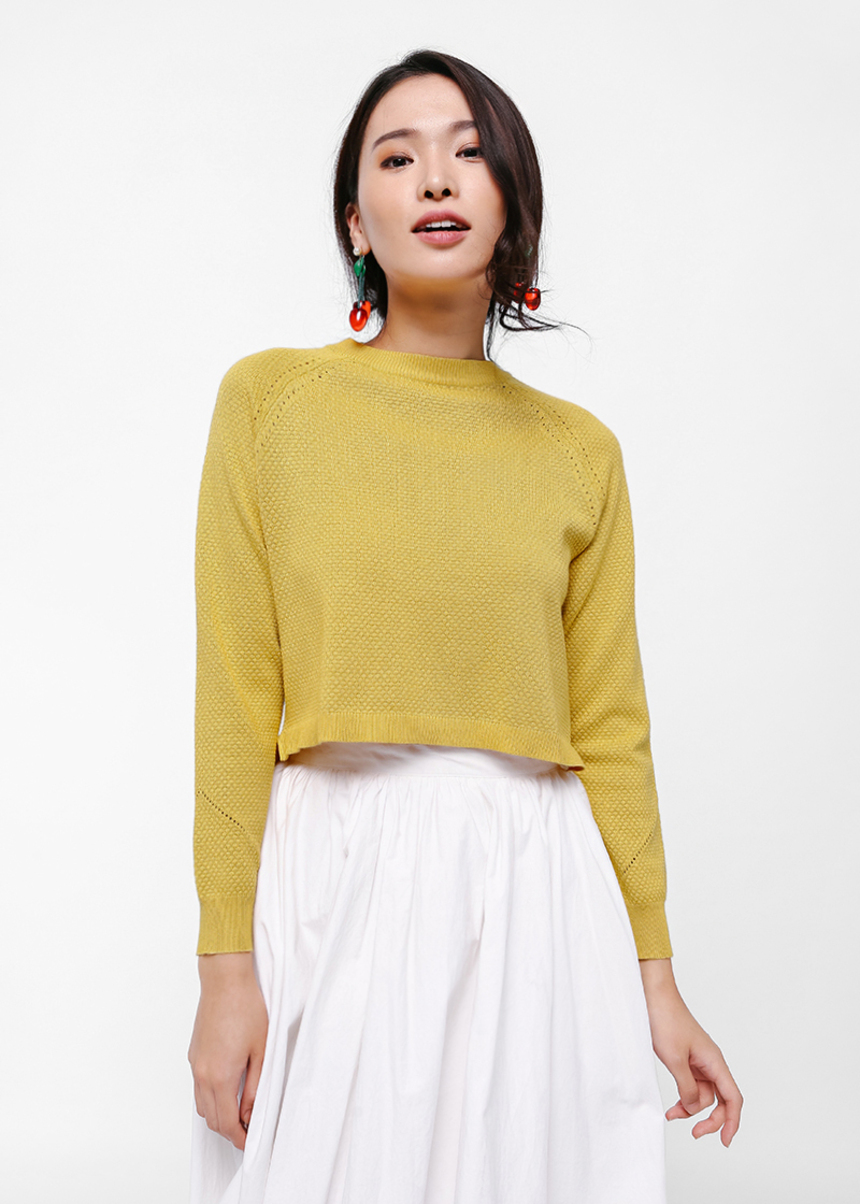 Elspeth Crop Knit Sweater