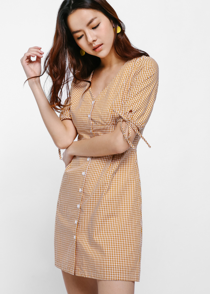 Danae Gingham Puff Sleeve Dress